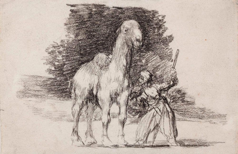 """""""Dromedario con su guía"""", por Weiss y Goya, h. 1824, lápiz litográfico sobre papel, Madrid, Museo Lázaro Galdiano."""