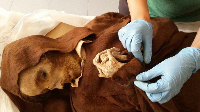 El estado de los hábitos franciscanos de algunas de las momias de Quinto de Ebro enterradas en la iglesia y los trajes infantiles de otras permiten observar cómo era la indumentaria tradicional de los habitantes de la localidad aragonesa hace siglos.