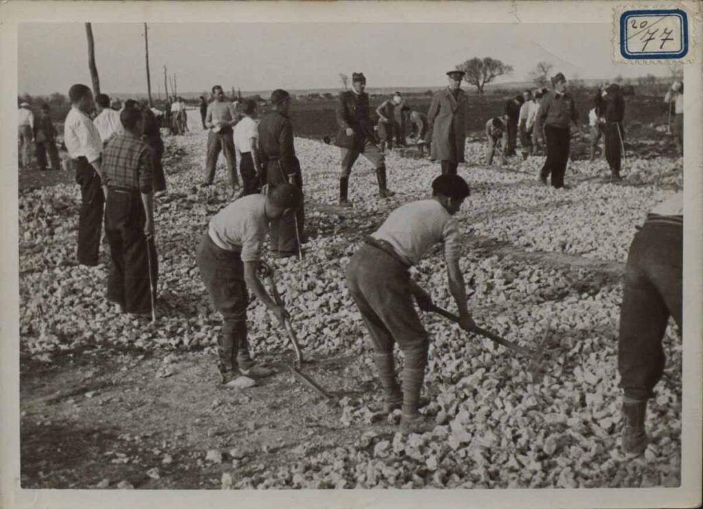 Prisioneros forzados a trabajar en el campo de San Pedro de Cardeña, en Castrillo del Val (Burgos), en 1938. Biblioteca Nacional de España.